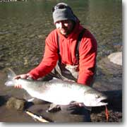 Marty Sheppard Steelhead Guide